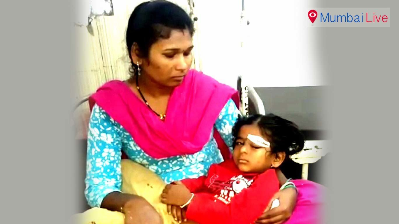 Street dogs attack two kids; injures one