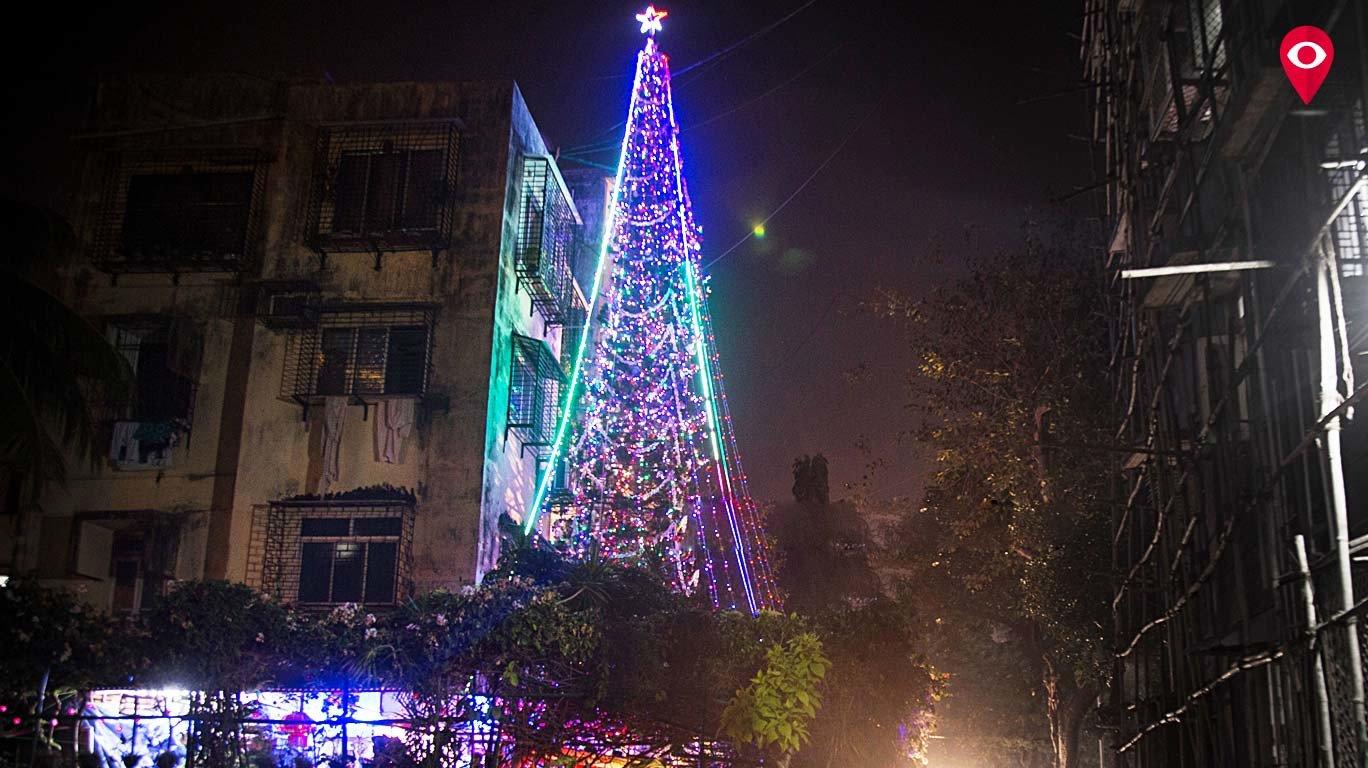 तुम्हाला माहितेय का? वरळीत वाढलंय भारतातलं सर्वात उंच 'ख्रिसमस ट्री'