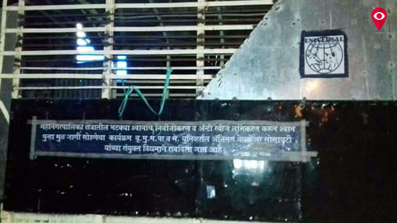 मुंबईत कु्त्ता बिर्याणी गँग पुन्हा सक्रिय?