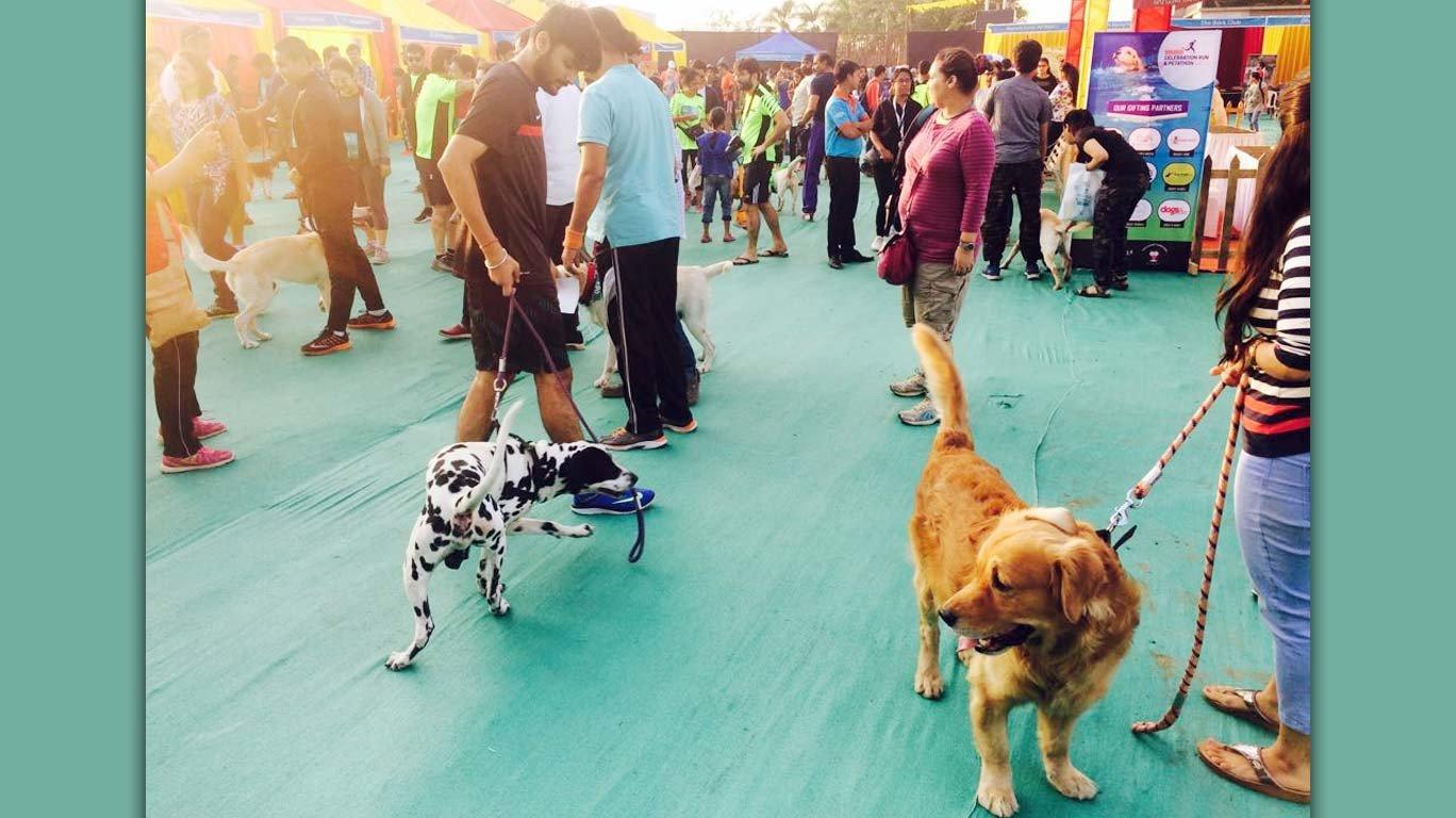 Mumbaikars including actress Gul Panag ran with their pets at Petathon 2017
