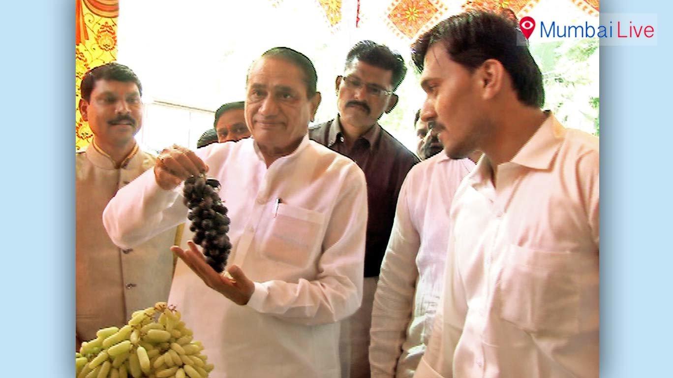 मुंबईत द्राक्ष महोत्सवाला उत्स्फूर्त प्रतिसाद
