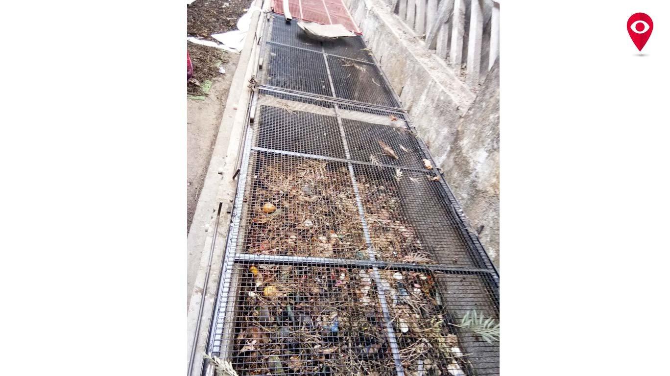 ग्रेट इस्टर्न लिंक्स सोसायटीची शून्य कचरा प्रकल्पाकडे वाटचाल