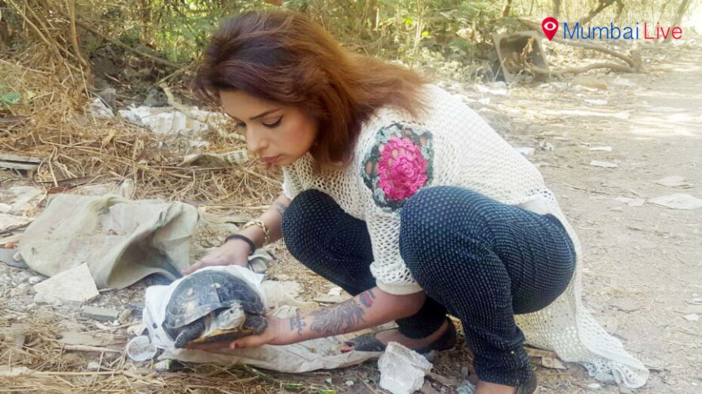 Actor Saundrya Garg rescues a turtle