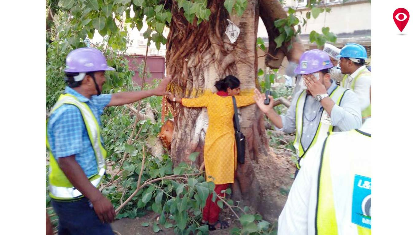 MMRC seeks citizens' support on tree felling for Metro