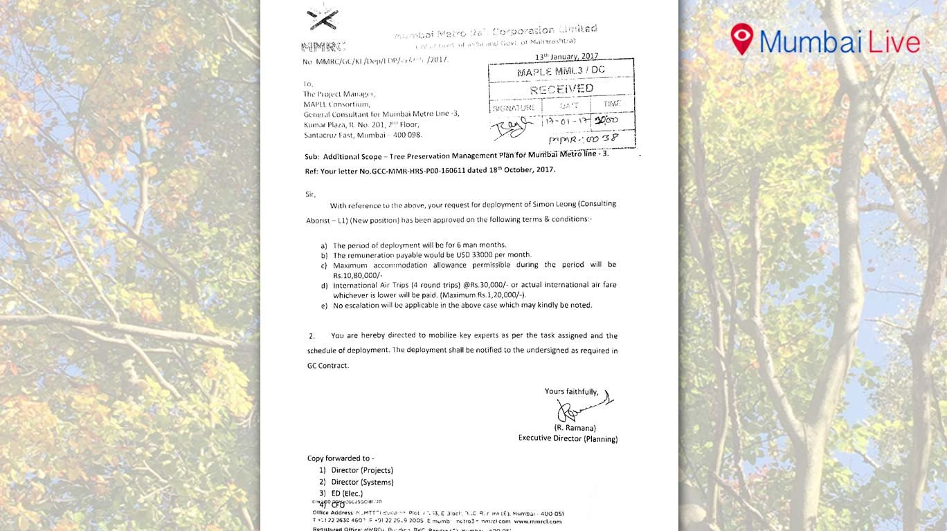 MMRC to spend 34 lakhs on tree surgeon
