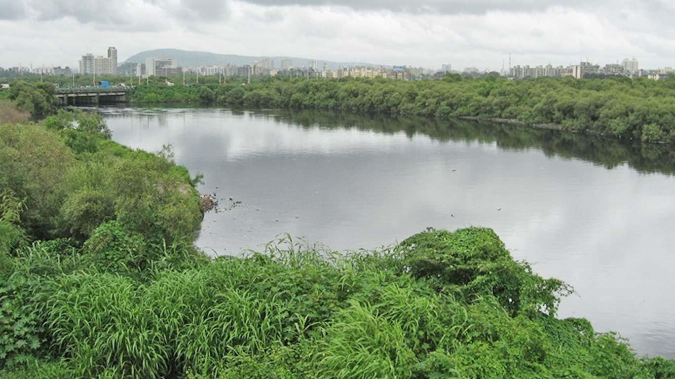 मंत्रीजी का अजीब दावा, 100 साल तक नहीं भरेगी मिठी नदी