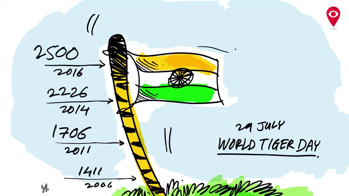 Let's celebrate our nation's pride on 'International Tiger Day'