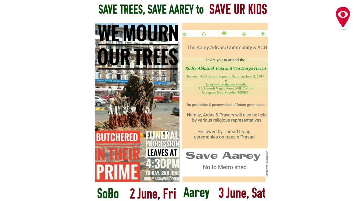 Dear Mumbai trees, rest in peace