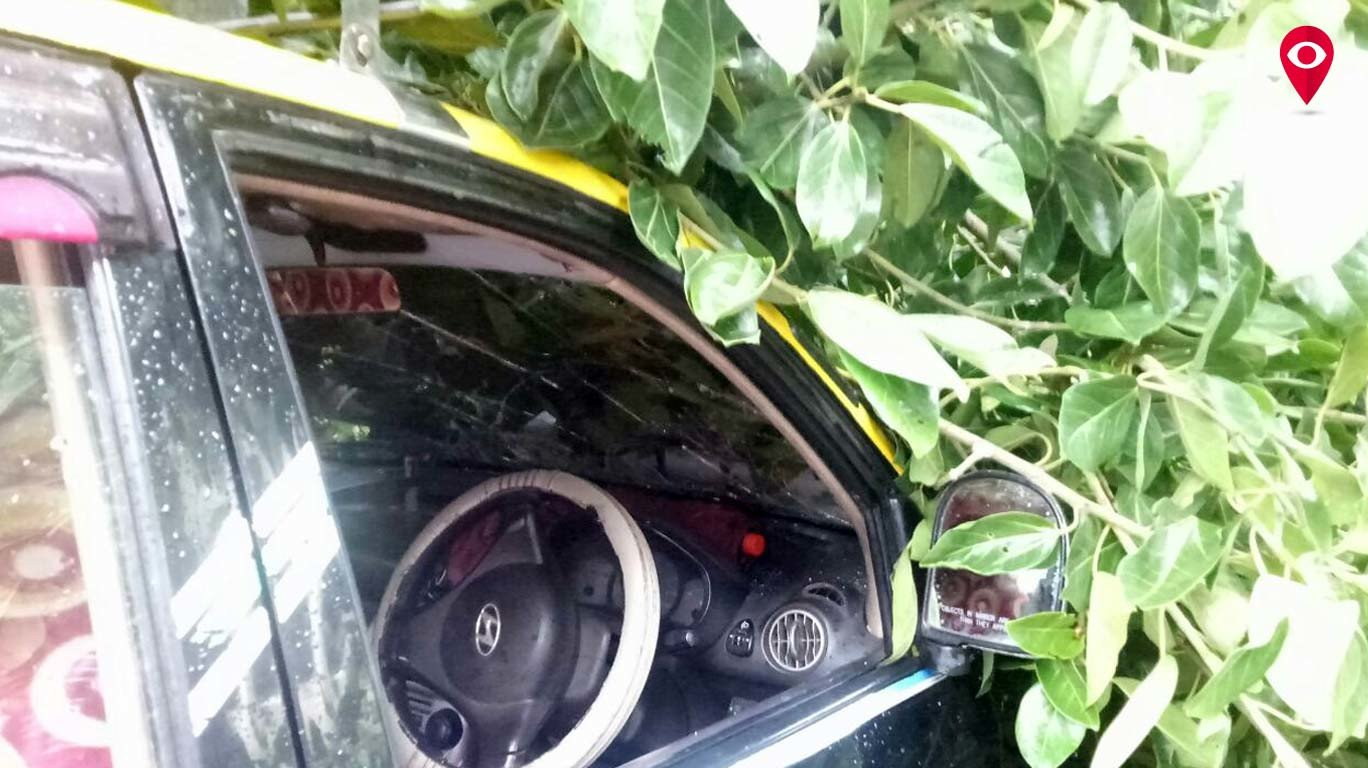 चर्चगेट स्थानकाबाहेर झाड कोसळल्याने 4 गाड्यांचे नुकसान