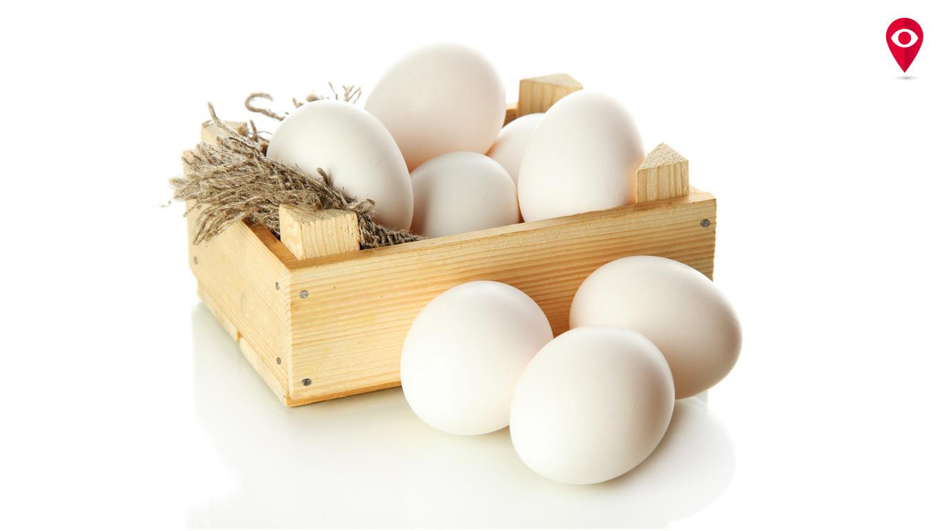 मुंबईकरांनो, बिनधास्त खा अंडी