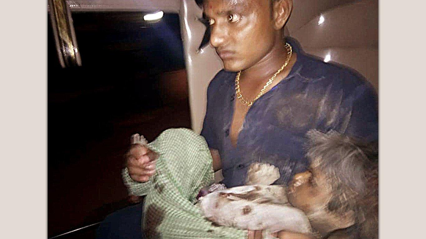 5 साल की बच्ची पर आवारा कुत्तों का हमला, युवक की हिम्मत ने बचाई जान!