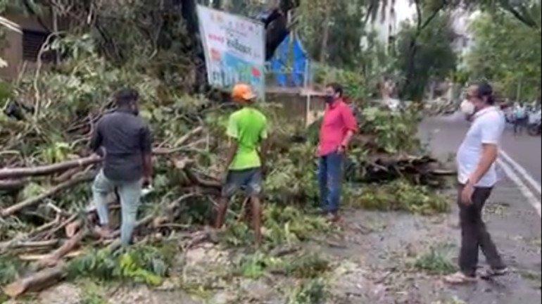 तूफान के बाद BMC कर्मचारियों पर बढ़ा काम का बोझ,  जनता को जल्द राहत के लिए नगरसेविका ने नियुक्त किये निजी ठेकेदार