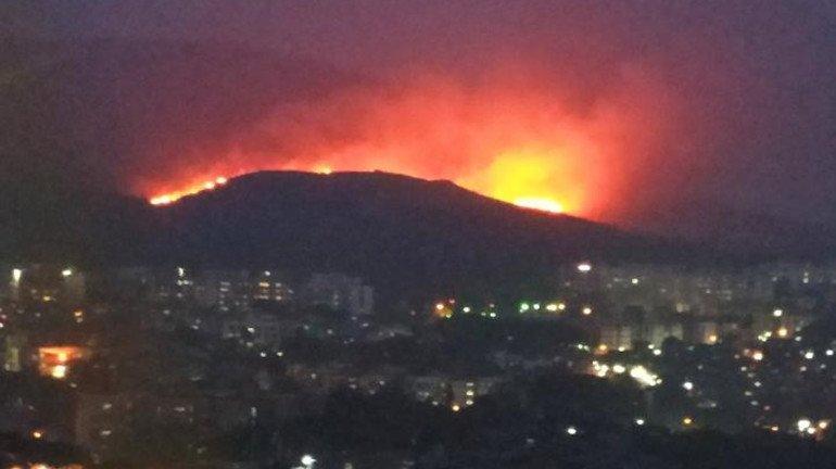 आरे कॉलोनी की पहाड़ी में लगी भीषण आग, वनसंपदा खतरे में