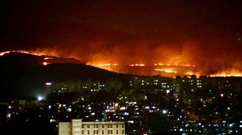 Exclusive: धक्कादायक! आरेतल्या 'त्या' जागेवर ११ वर्षांत ३० वेळा लागली आग
