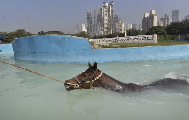 Mumbai gets ready for the much-anticipated Kingfisher Ultra Indian Derby 2019