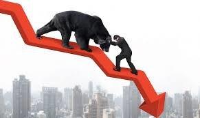 Share Market भाग ७ : बैल आणि अस्वलाचा असा आहे शेअर बाजाराशी संबंध