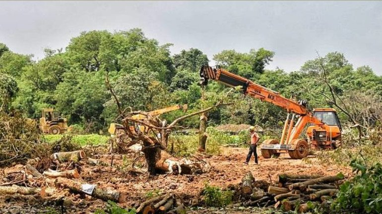 Central Groundwater Authority Rejects MMRCL's Request for Use of Groundwater at Aarey