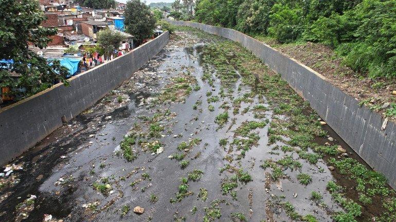 मेट्रो भवन, कारशेड मुंबईसाठी ठरणार धोकादायक
