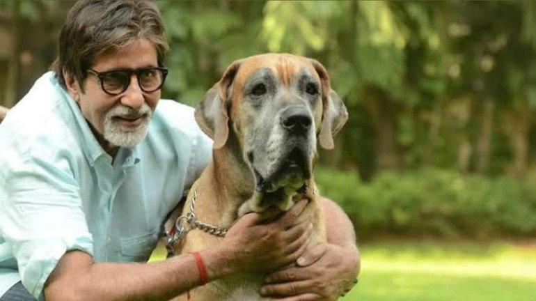 Superstar Amitabh Bachchan Turns 79