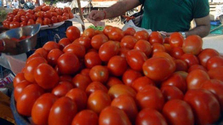 टोमॅटो दरामध्ये मोठी वाढ; प्रतीकिलो ५० रुपये