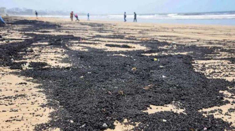 जुहू समुद्र किनारी काळ्या वाळूची चादर