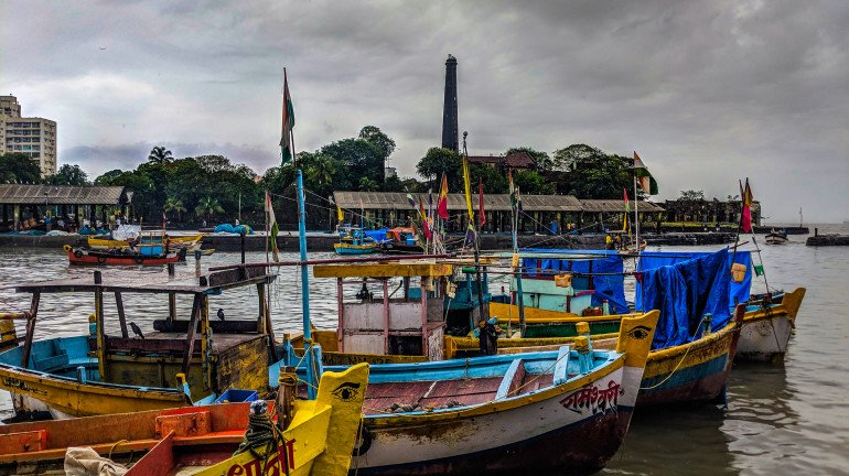 Palghar: Fisherman Sells His Catch For A Whopping Rs 1.33cr