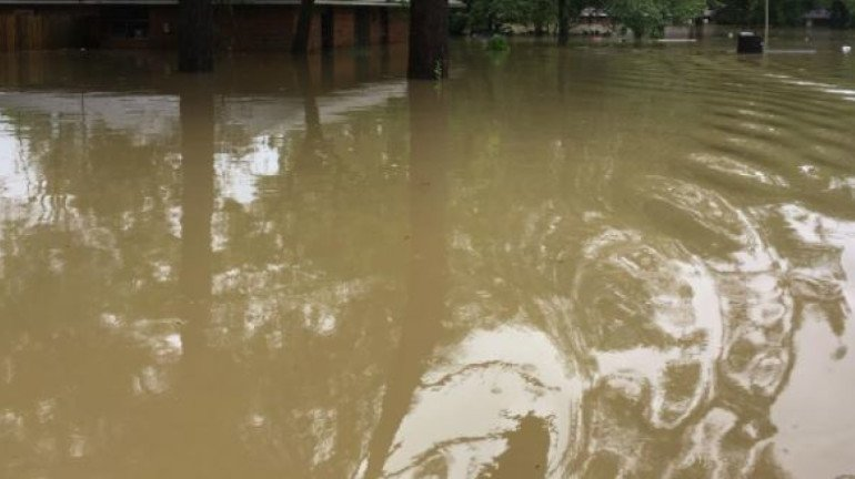 Rivers in Raigad and Ratnagiri flow at danger level due to heavy rainfall