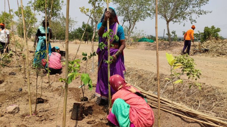 Sony Pictures Networks joins hands with SayTrees for a greener planet