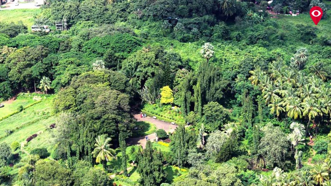 Aarey row: Forest department seeks more time to submit documents