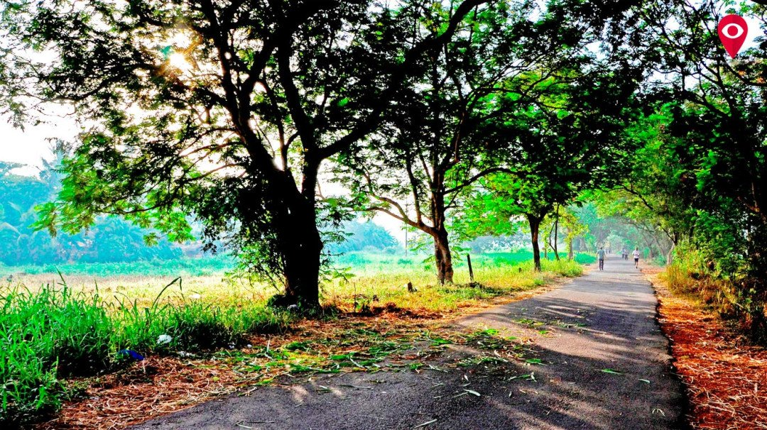 MMRC to get additional land in Aarey