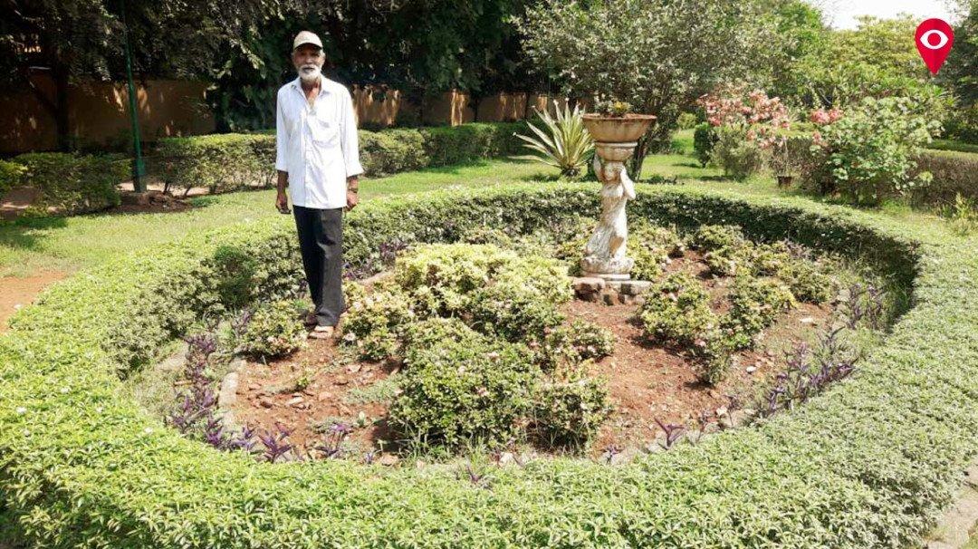 एएलएममुळे बहरली 2.5 एकरची बाग