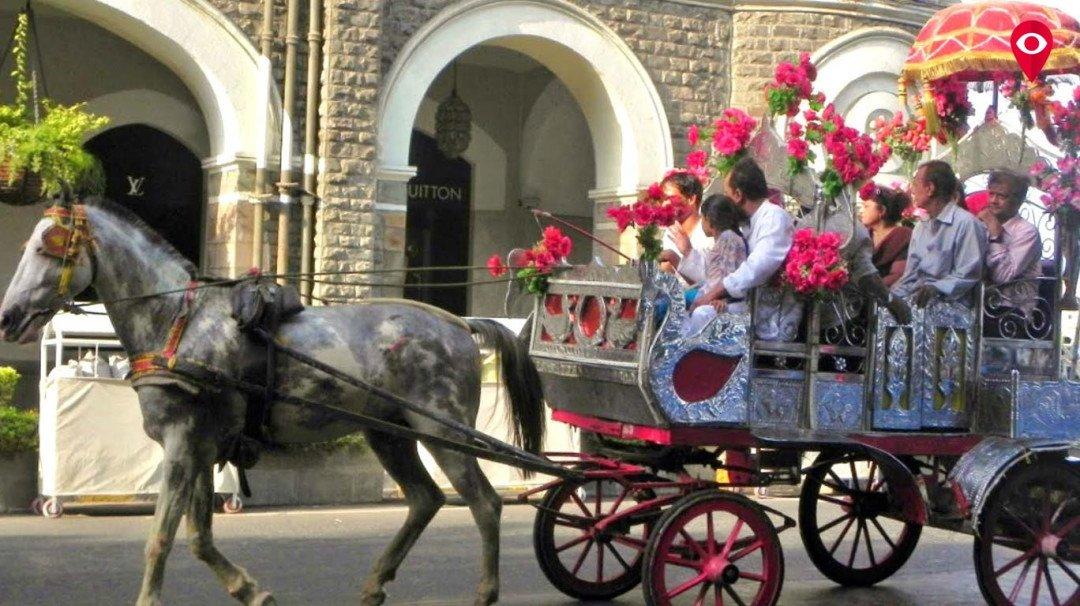 घोडागाडी आणि व्हिक्टोरिया चालकांचे पुनर्वसन होणार