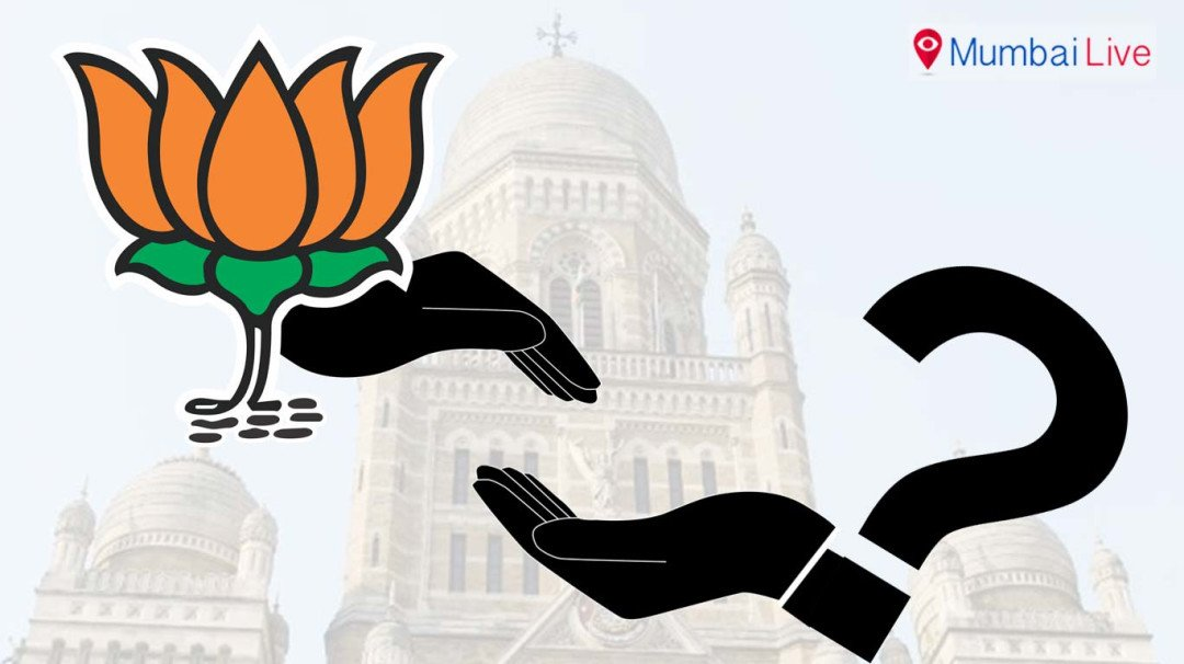 BJP-MNS: Hand in glove?