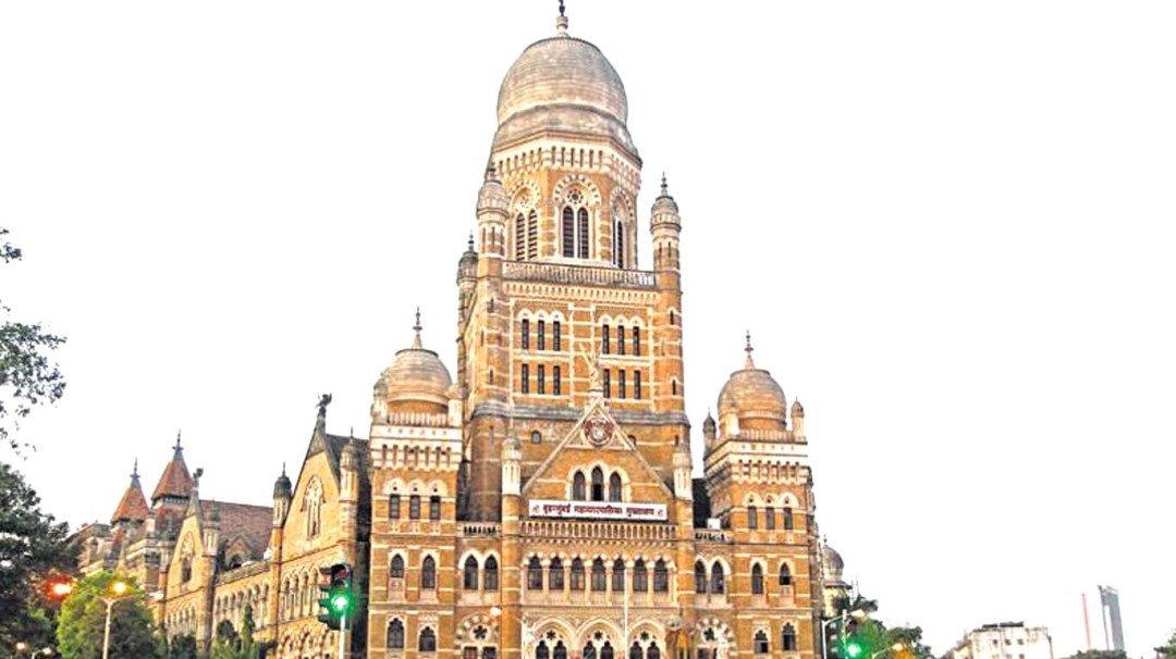 मुंबईत लेप्टोचे रुग्ण घटले, महापालिकेच्या आरोग्य विभागाचा अहवाल