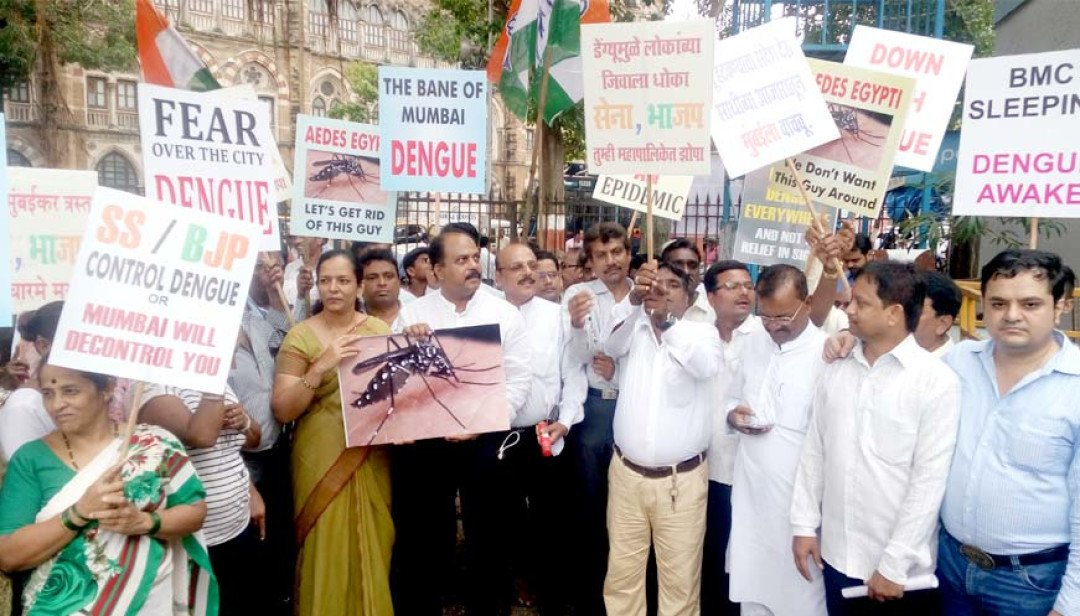 Congress blames BMC for dengue
