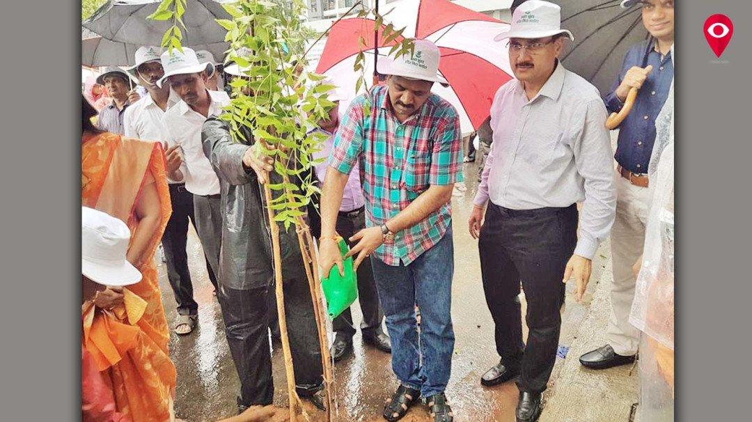 बारिश में पौधो को पानी देने पहुंचे बीजेपी विधायक, सोशल मीडिया पर फोटो हो रही वायरल