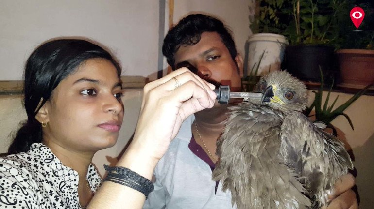 चिमुरड्यांनी वाचवले पक्ष्यांचे प्राण!