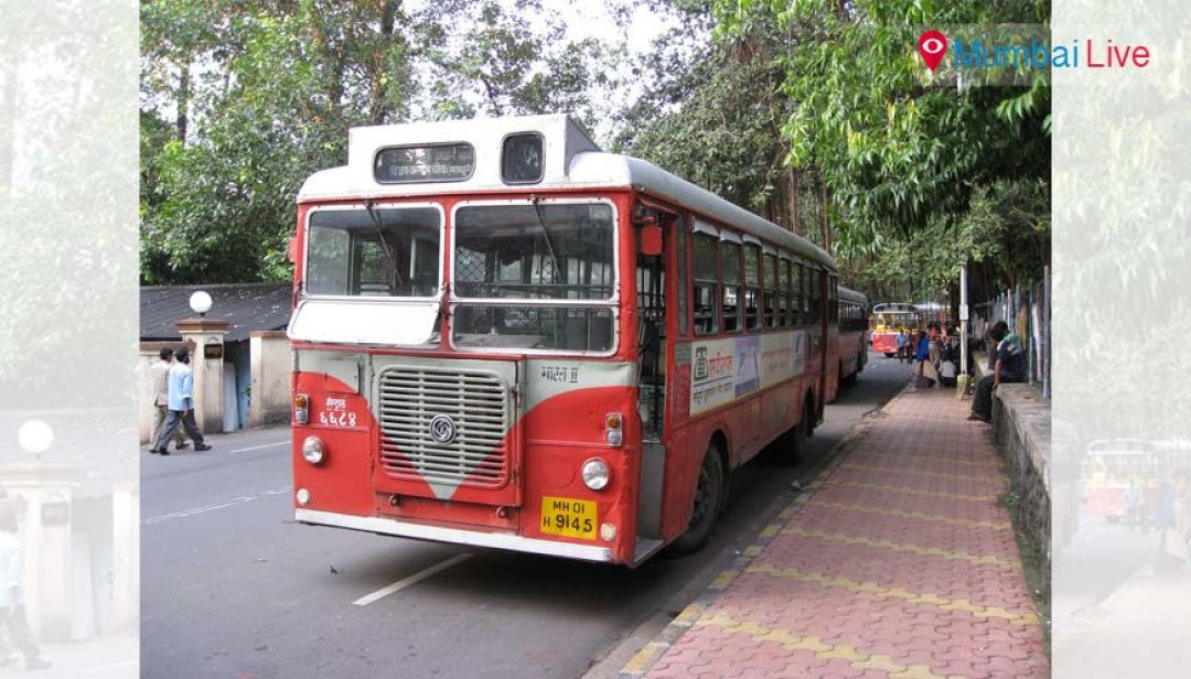 Concessional bus fares for MSSC staff