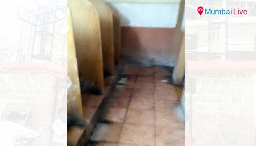 Smelly Borivali court