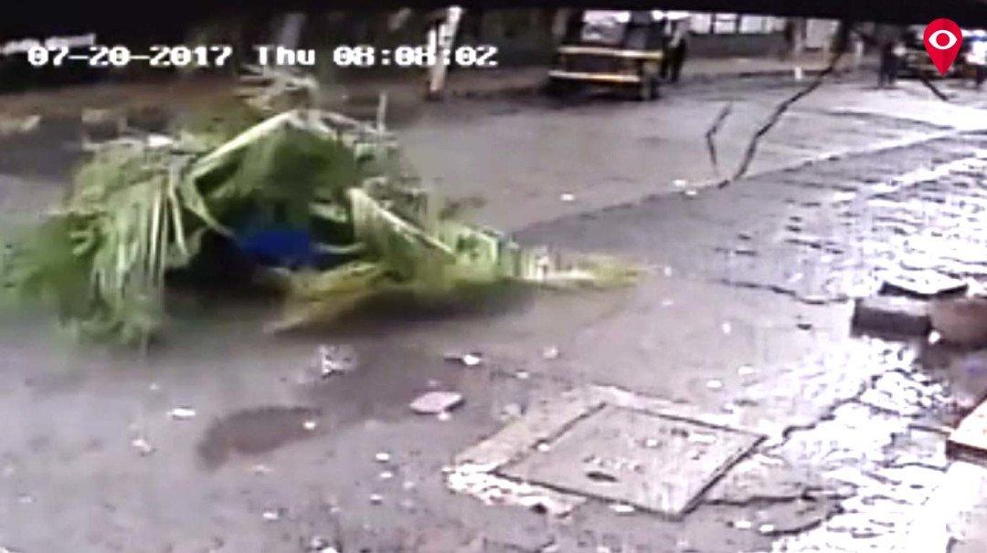 'चेंबूर झाड दुर्घटनेप्रकरणी सदोष मनुष्यवधाचा गुन्हा दाखल करा'