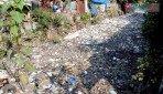कचरा से लोग परेशान