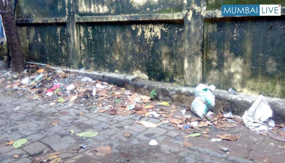 Heap of waste