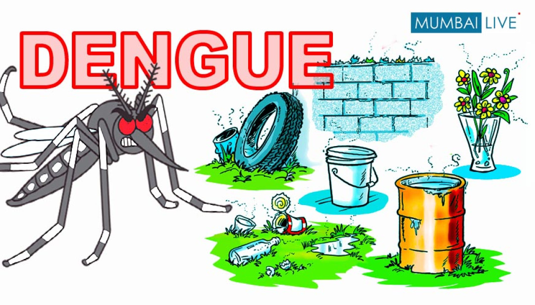 Dengue in Mumbai !