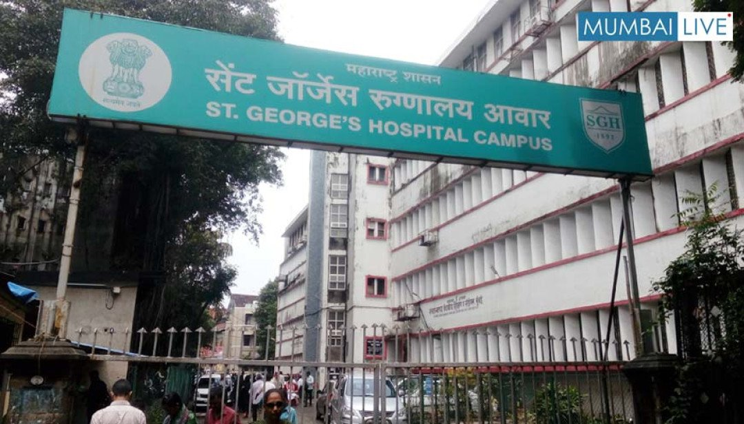 Doctors down with dengue