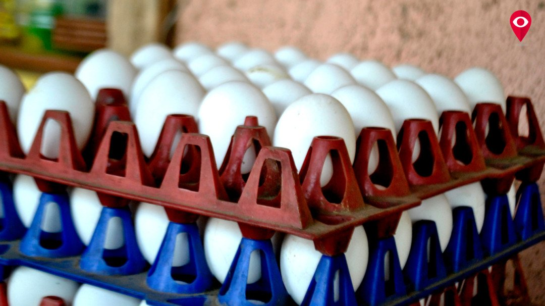 No truth in plastic eggs rumour, say experts