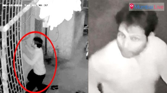 Physiotherapist's murderer held