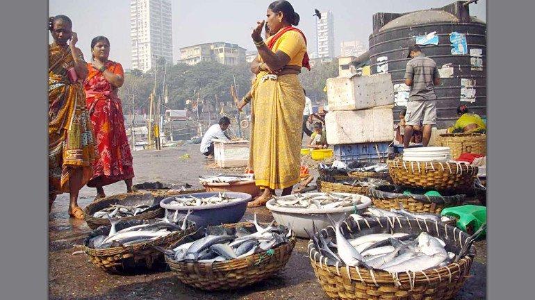 ओखी इफेक्ट: म्हावरं महागणार... पुढचे १० दिवस मासेमारी बंद