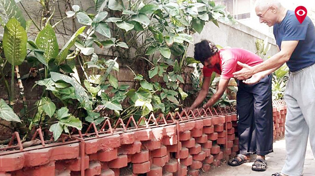 Meet Anil Bhatia - the man who turns 5-star hotel kitchen waste to plant food in Mumbai