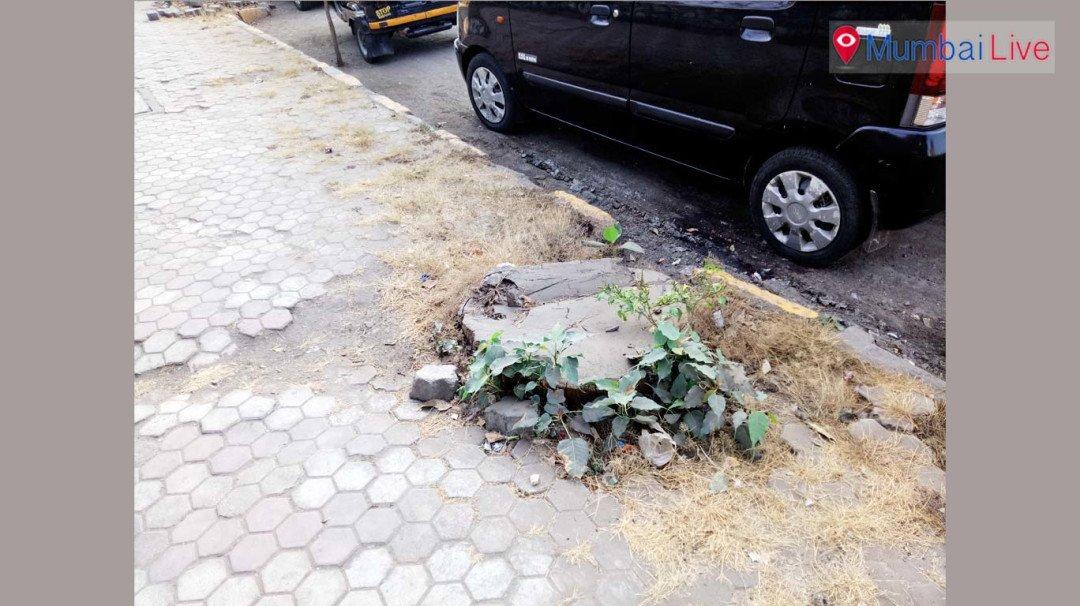Footpath pockmarked by debris, clutter