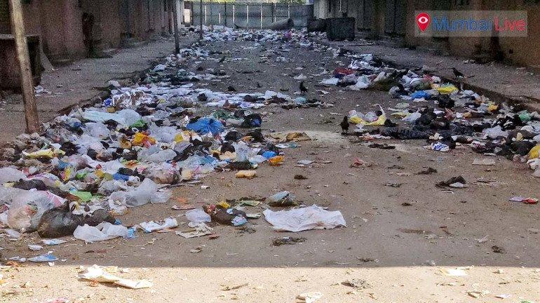 कब मिलेगा कचरे से छुटकारा?